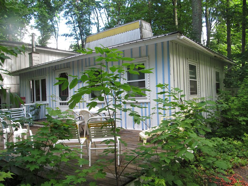 Your cute cottage getaway in the woods ten minutes from TC - Blue Moon Hideaway - Traverse City - rentals