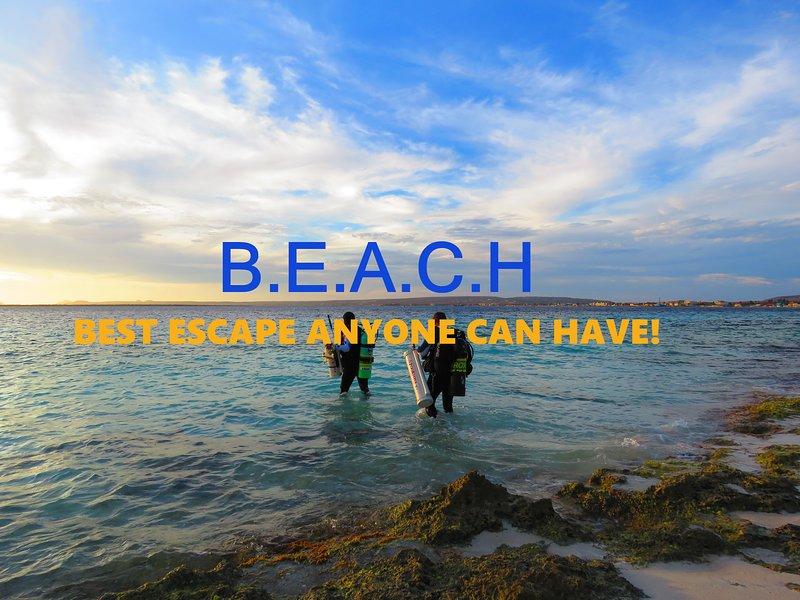 Treasure By The Sea Bonaire KAS DI AMIGU 1 - Image 1 - Kralendijk - rentals