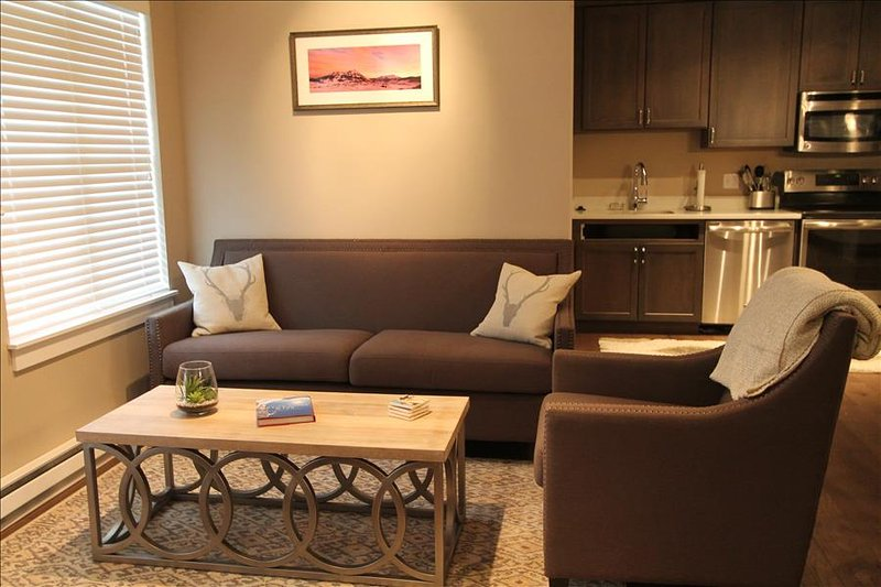 Beautifully renovated 2 BR at the Timbers!  Hot tub! - Image 1 - Crested Butte - rentals