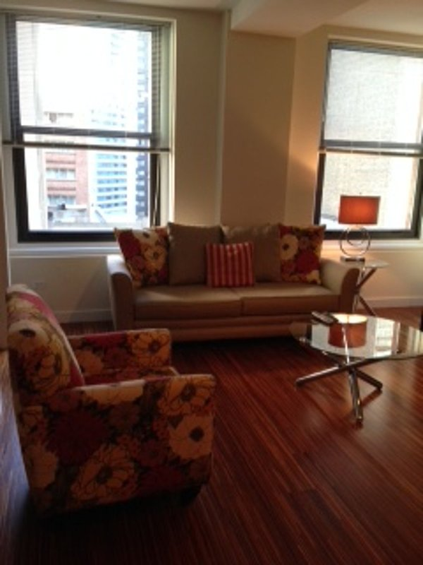 Elegant and Stylish 2 Bedroom 1 Bathroom Apartment in Chicago - Image 1 - Chicago - rentals