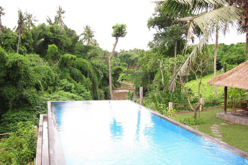 River View Villa - Image 1 - Lodtunduh - rentals