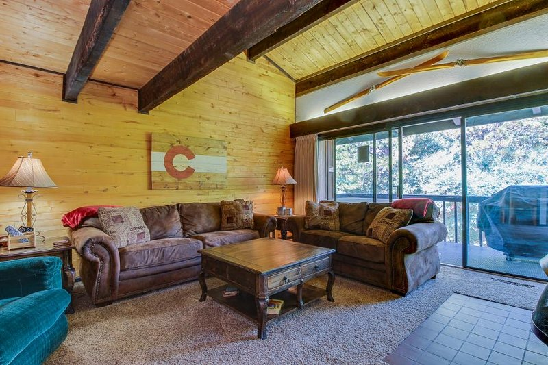 Spacious family townhome with summer pool and private hot tub - Image 1 - Steamboat Springs - rentals