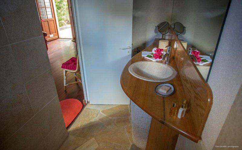 Apiano - APA - Image 1 - World - rentals