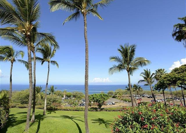 Maui Kamaole #A-207 - Image 1 - Kihei - rentals