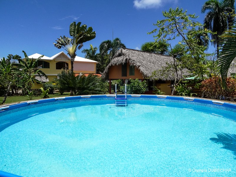 the pool - LABELLAVENTURA IN LAS GALERAS SAMANA DOMINICAN REP - Las Galeras - rentals