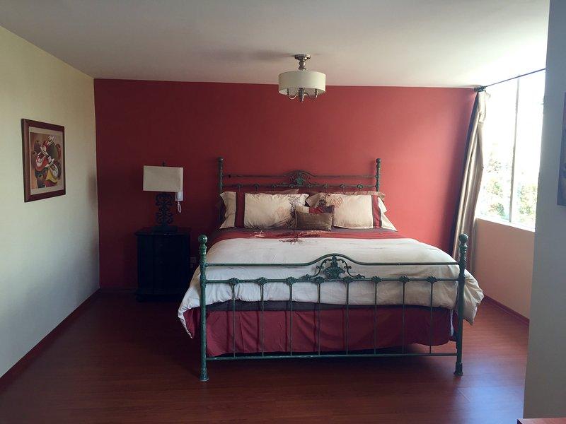 master bedroom king bed and plasma tv and dvd  - Quito Casa de Pilar - Quito - rentals