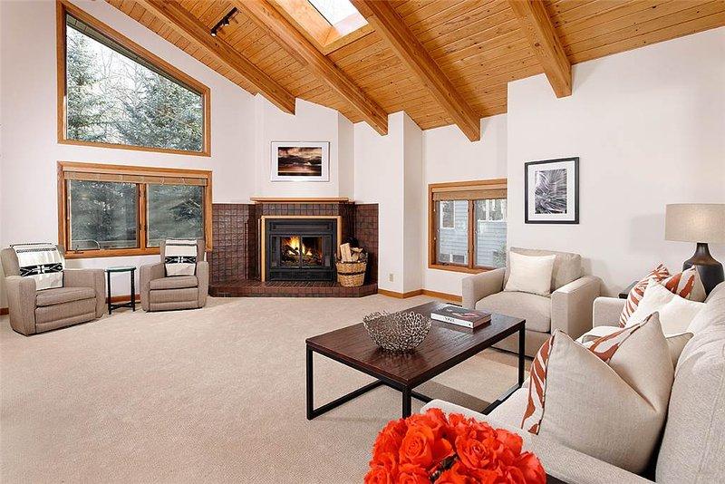 Lava Home - Image 1 - Snowmass Village - rentals