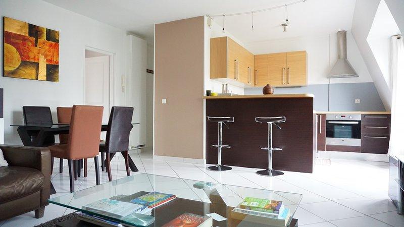 rue Bassano 75016 PARIS - 216040 - Image 1 - Paris - rentals