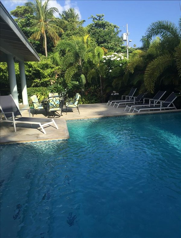 Garden House - Three Suites in a Tropical Paradise - Image 1 - Isla de Vieques - rentals