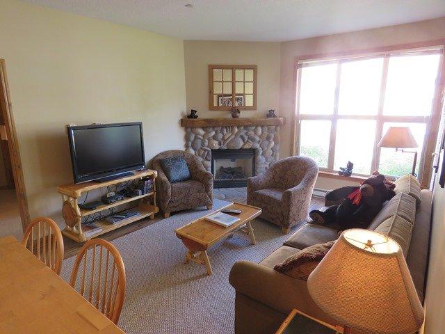 Livingroom - Crystal Forest Condos - 63 - Sun Peaks - rentals