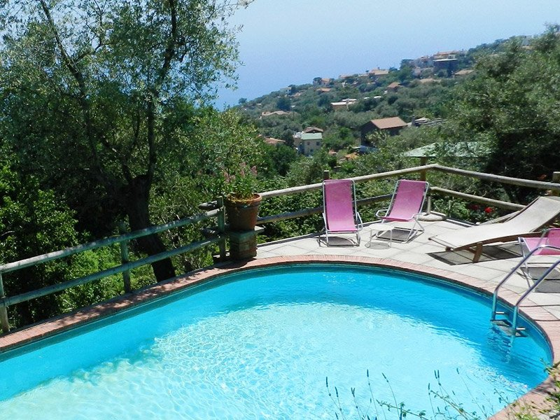 Shared pool at farmhouse villa terralu located in Sant'Agata sui due Golfi accommodation amalficoast - Pretty Villa Terralu in Farmhouse with shared pool - Sorrento - rentals