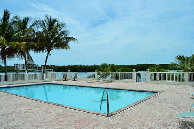 P61 Swimmer's Splendor 3 bdm Gulf front pool home - Image 1 - Marathon - rentals