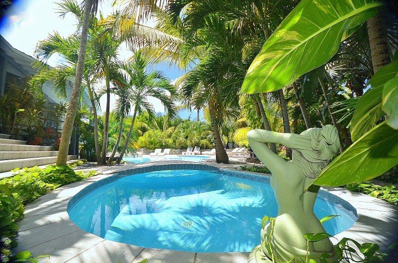 VILLA ABSOLUTE ECSTASY....A stunning modern 6BR villa in Orient Bay - Image 1 - Orient Bay - rentals