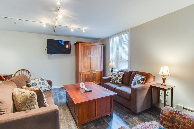 Condo w/shared hot tub, only walking distance to ski slopes! - Image 1 - Aspen - rentals