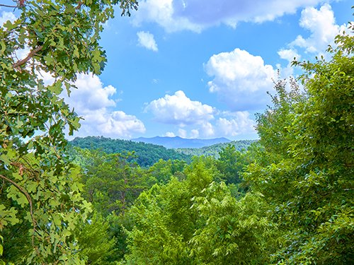 Return To Me - Image 1 - Sevierville - rentals