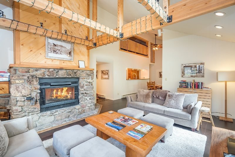 Lulu City 3E Telluride Vacation Condo For Up To 5 Guests - Image 1 - Telluride - rentals