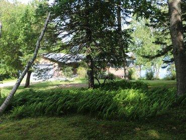 Silvershore - New, Blue Hill! - Image 1 - Blue Hill Falls - rentals