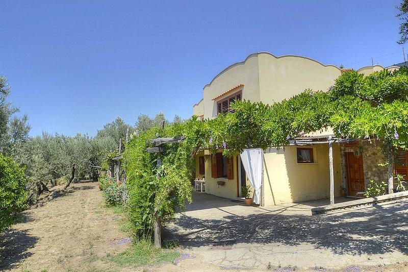 Villino della Nonna - Image 1 - Massa Lubrense - rentals