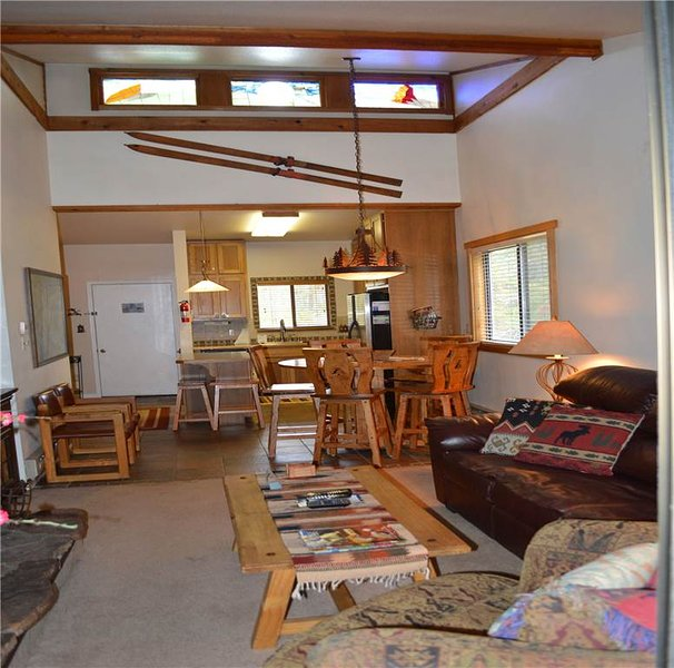 Beaver Village Unit #0131 - Image 1 - Winter Park - rentals