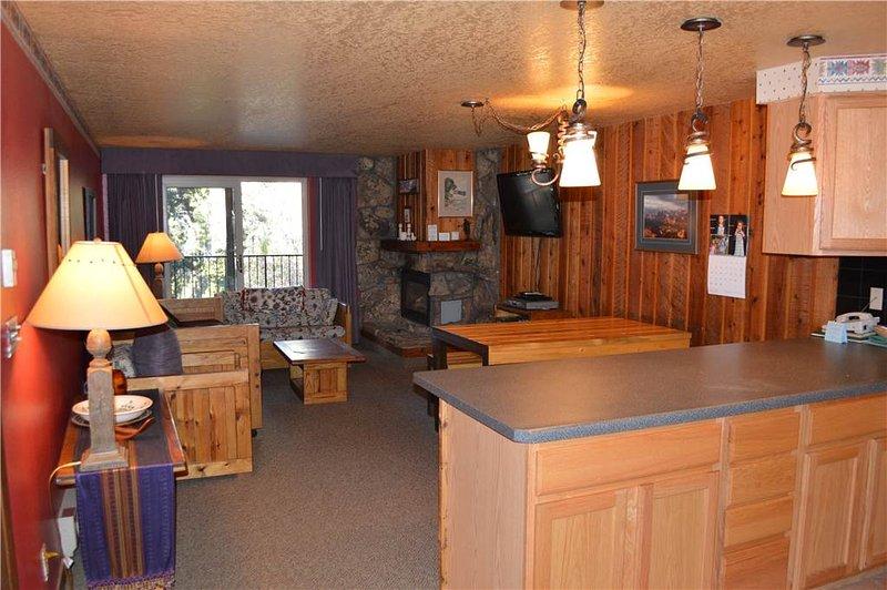 Beaver Village Unit #1113 - Image 1 - Winter Park - rentals