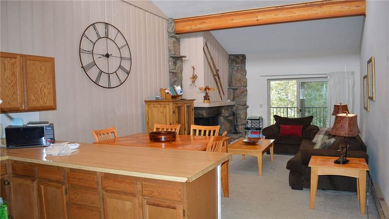 Beaver Village Unit #1533 - Image 1 - Winter Park - rentals