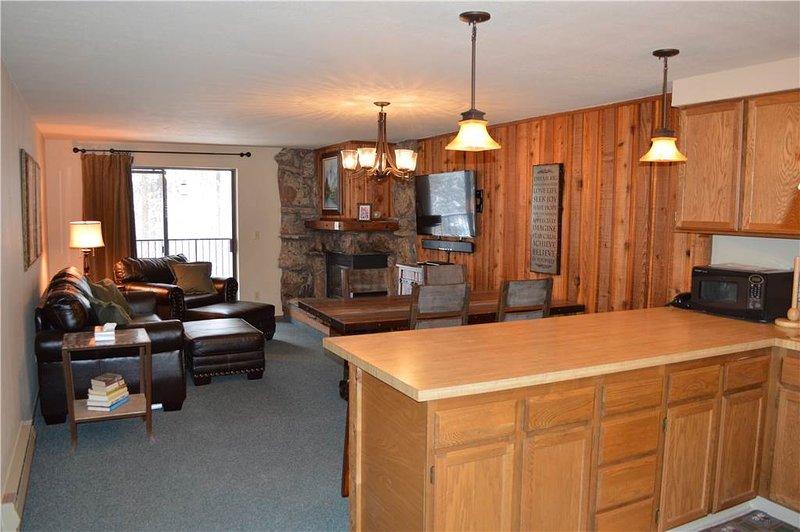 Beaver Village Unit #1622 - Image 1 - Winter Park - rentals