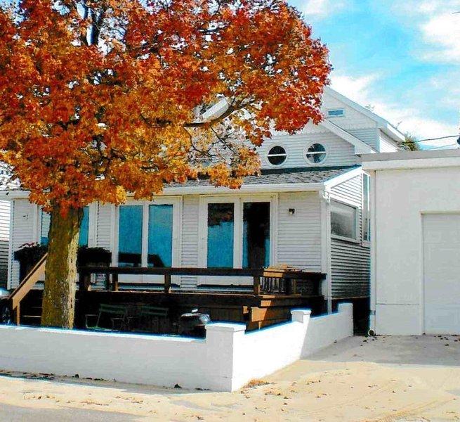 60 Lakeshore Drive - Image 1 - South Haven - rentals