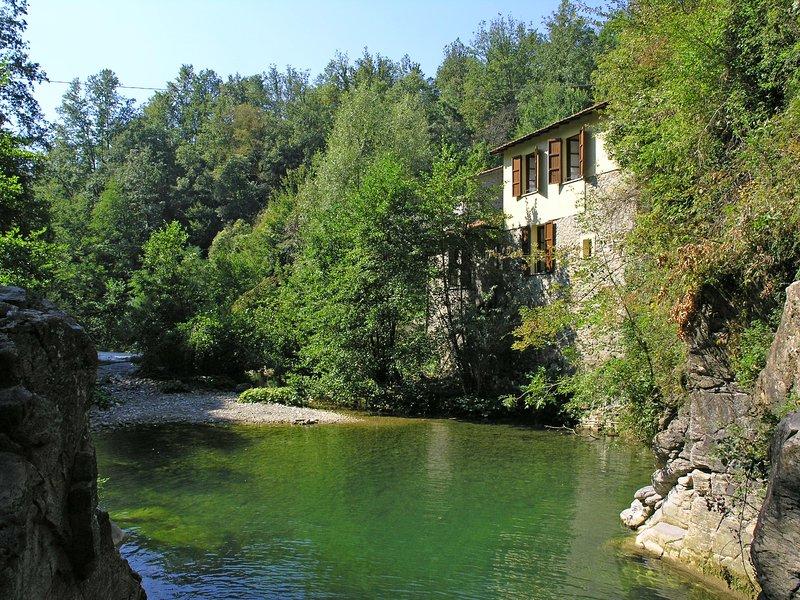 Villa Il Mulino  - VILLA IL MULINO - Villafranca in Lunigiana - rentals