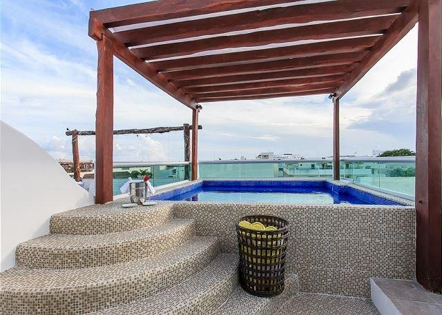 MAGIC PARADISE MAMITAS BEACH AREA,  Ocean View from rooftop & Private Pool - Image 1 - Playa del Carmen - rentals