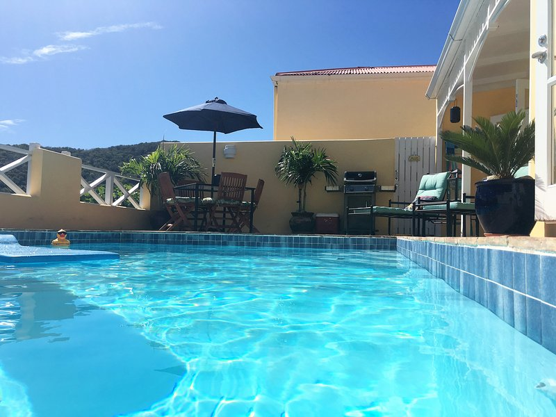 Island Dreams Villa with Private Pool - Image 1 - Teague Bay - rentals