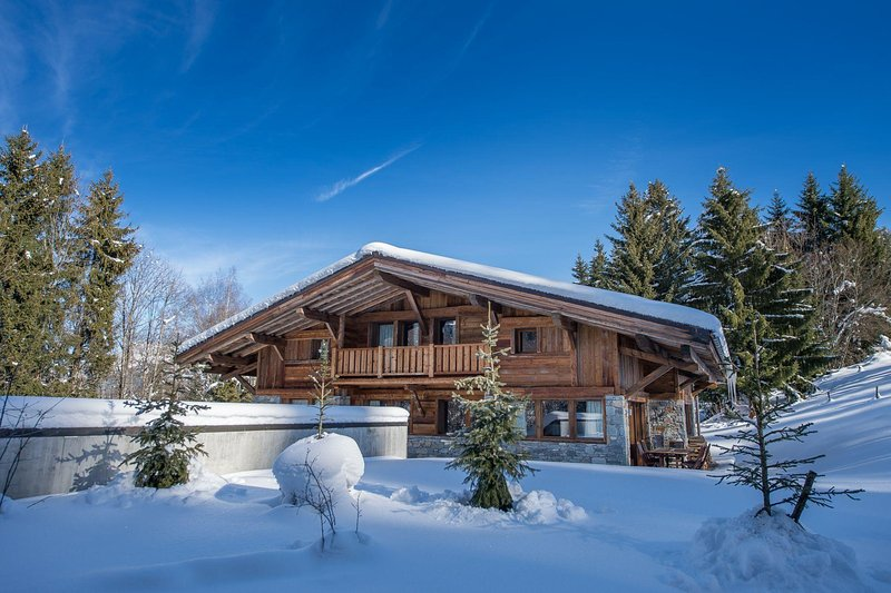 Chalet Axel - Image 1 - United States - rentals