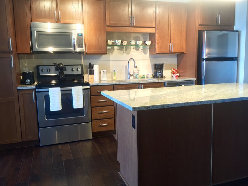 Heart of Downtown, Walk to Convention Center! - Image 1 - Dallas - rentals