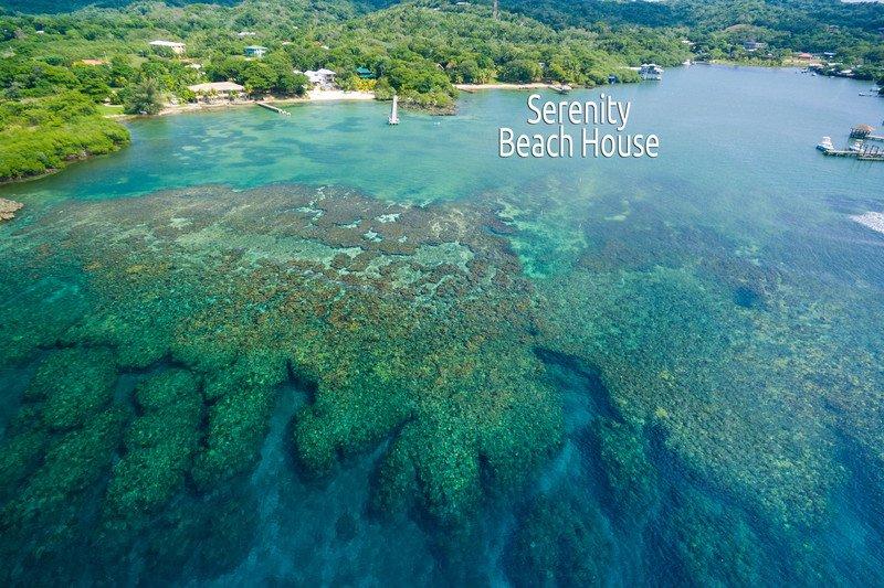 Serenity Beach House - Serenity Beach House - Roatan - rentals