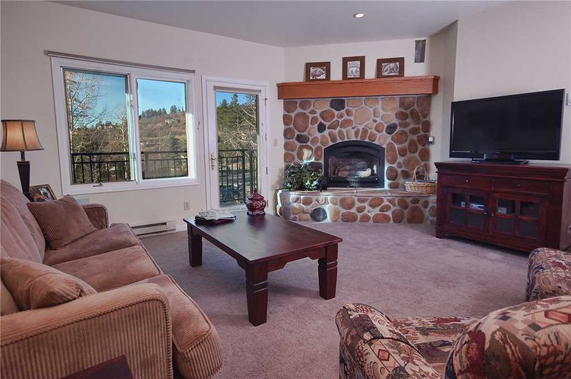 Scandinavian Lodge and Condominiums - SL302 - Image 1 - Steamboat Springs - rentals