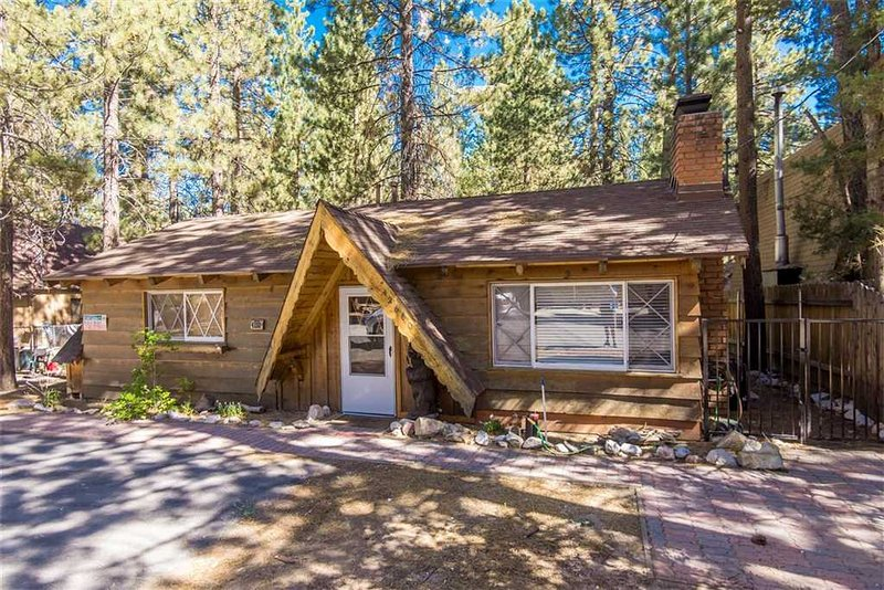 1 Classic Cabin - Image 1 - City of Big Bear Lake - rentals