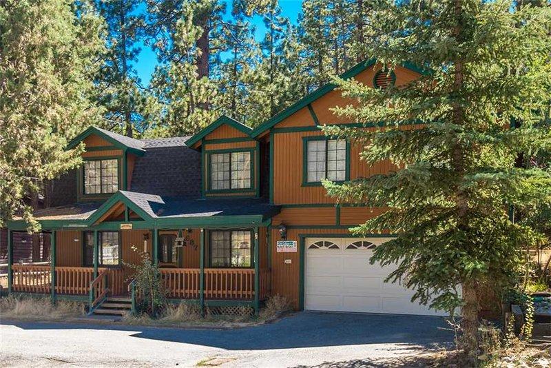Alpine Escape - Image 1 - City of Big Bear Lake - rentals