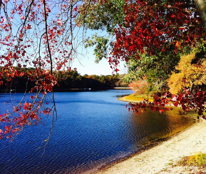 Our lake in autumn - RELAXATION ON THE PEACEFUL BEAUTIFUL LAKE - East Falmouth - rentals