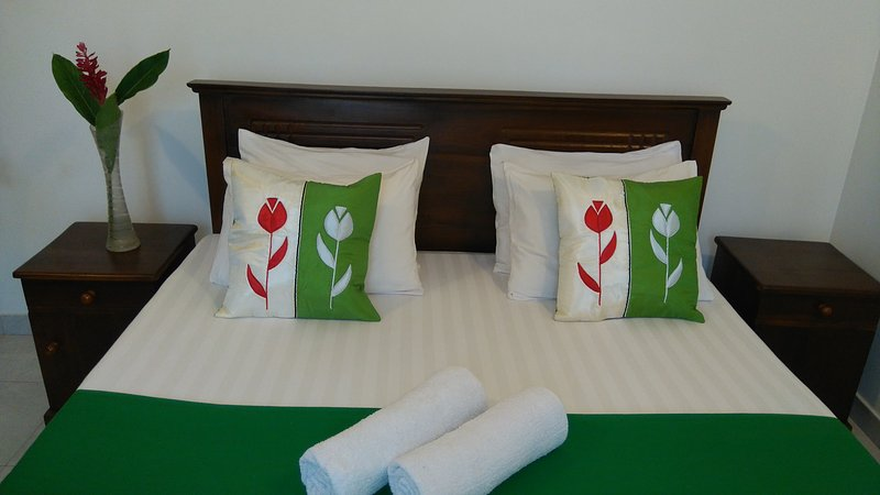 Entire villa for less than a hotel room price - Image 1 - Panadura - rentals
