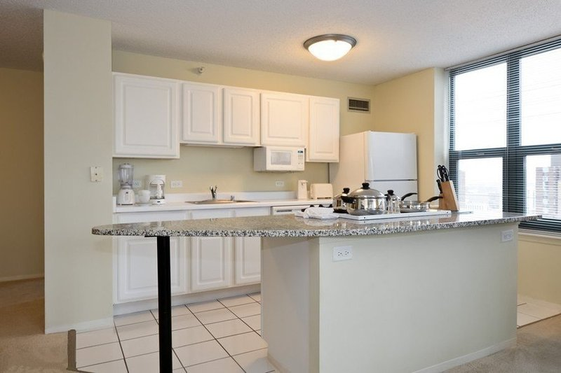 CHARMING, CLEAN AND SPACIOUS 2 BEDROOM, 2 BATHROOM APARTMENT - Image 1 - Chicago - rentals
