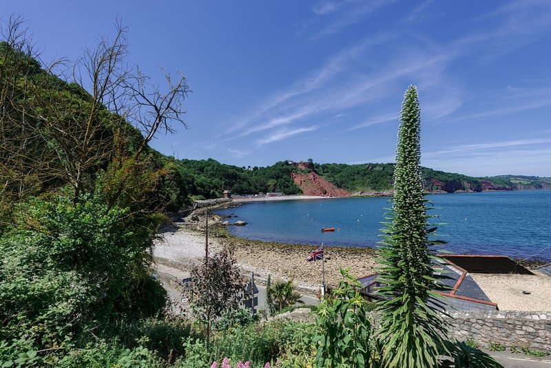 Babbacombe Bay House located in Torquay, Devon - Image 1 - Torquay - rentals