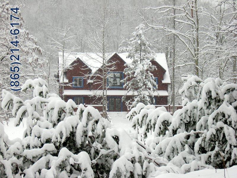 Blue Mountain Lodge -btw Gatlinburg & Pigeon Forge - Image 1 - Gatlinburg - rentals