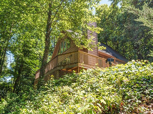 Eagles Nest - Image 1 - Gatlinburg - rentals