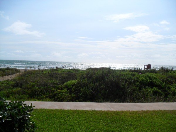 INTERNACIONAL #104: 1 BED 1 BATH - Image 1 - South Padre Island - rentals