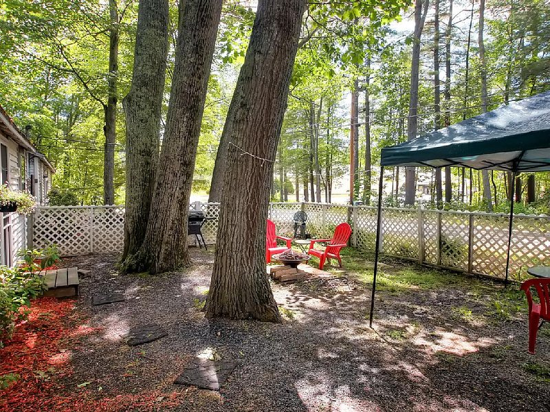 Great yard with fire pit and grill - Lake Winnipesaukee, House close to Lake - Gilford - rentals