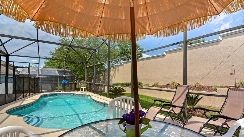 Screened Heated Private Pool - Luxury Lake View Pool Home Near Disney - Orlando - rentals