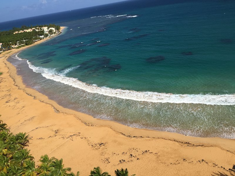Paradise on the Beach! - Image 1 - Luquillo - rentals