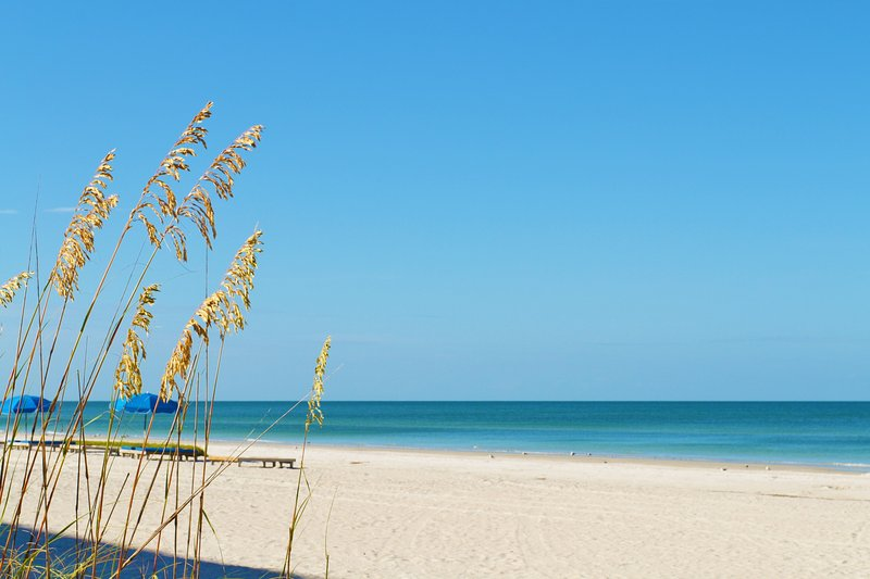 Barefoot Beach 1 Bedroom w/ Private Outdoor Patio - Image 1 - Indian Rocks Beach - rentals