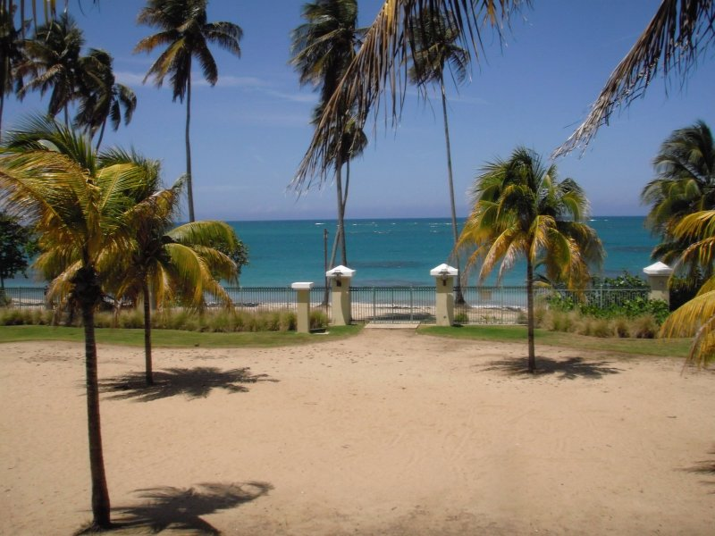View from the Master Bedroom and Balcony - Aquatika  Beachfront  with Rainforest View - Canovanas - rentals