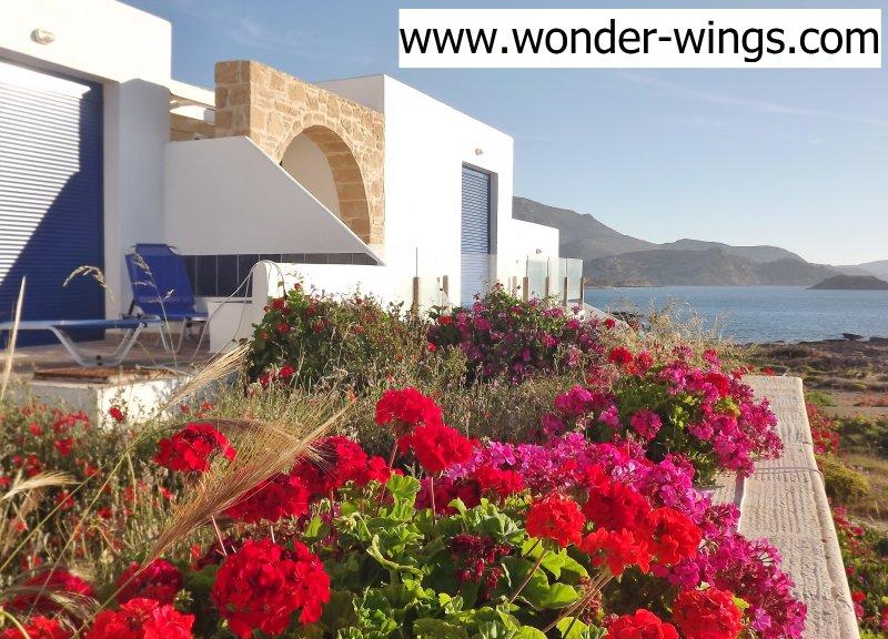 Front View of the Villa - Villa Wonder Wings - Karpathos: 30mt from the sea! - Karpathos Town - rentals