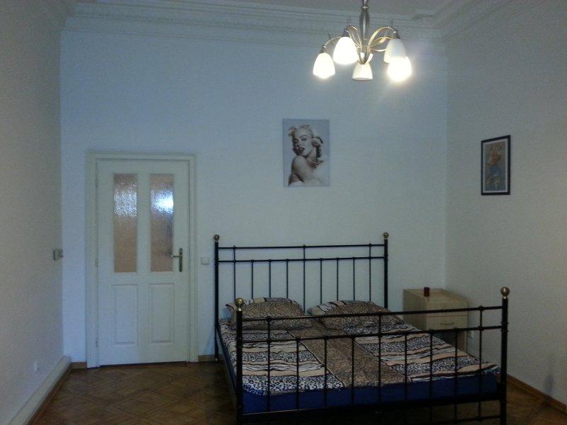 Beautiful spacious flat in Central Prague! - Image 1 - Prague - rentals